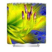 Stigma - Photopower 1157 Shower Curtain