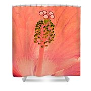 Stigma - Photopower 1208 Shower Curtain