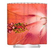 Stigma - Photopower 1229 Shower Curtain