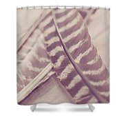 Still And Silent Shower Curtain