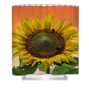 Still Busy At Sunset Shower Curtain