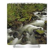 Still Creek Mt Hoodoregon Shower Curtain