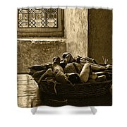 Still Life At Chenonceau Shower Curtain