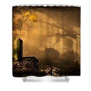 Still Life - Day Lily Shower Curtain