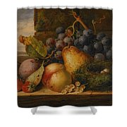 Still Life Grapes Pares Birds Nest Shower Curtain by Edward Ladell