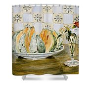 Still Life Of A Melon And A Vase Of Flowers Shower Curtain
