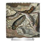 Still Life Of Fish, 1928 Shower Curtain