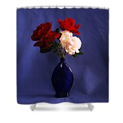 Still Life Red White And Blue Shower Curtain