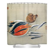 Still Life  Salmon Slices And Sardines Shower Curtain