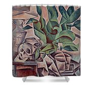 Still Life Showing Skull Shower Curtain by Kubista Bohumil