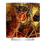 Still Life Study II Shower Curtain