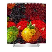 Still Life Tomatoes Fruits And Vegetables Shower Curtain