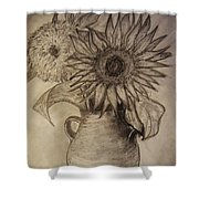 Still Life Two Sunflowers In A Clay Vase Shower Curtain