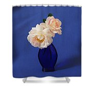Still Life Wild Rose Shower Curtain