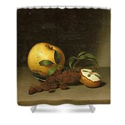 Still Life With Cake  Shower Curtain