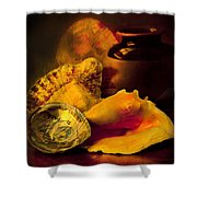 Still Life With Shells Shower Curtain