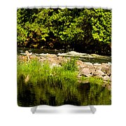 Still Pool And Fast River Shower Curtain