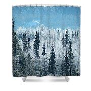 Still Valley  Shower Curtain