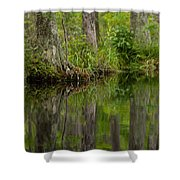 Stillness Swamp Shower Curtain