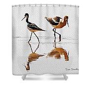 Stilt And Avocet Share The Pond Shower Curtain