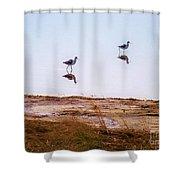 Stilt Birds Shower Curtain