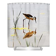 Stilt Chick Looking For Food Shower Curtain