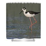 Stilt In Duckweed Shower Curtain