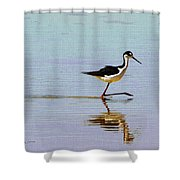 Stilt Out For A Stroll Shower Curtain