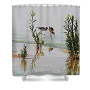 Stilts Hunting And Pecking Shower Curtain