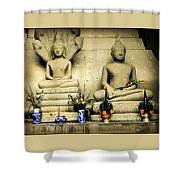 Stone And Flowers Shower Curtain