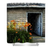 Stone Barn Acanthus Shower Curtain
