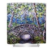Stone Bridge 2 Shower Curtain
