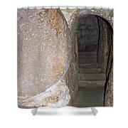 Stone Door Shower Curtain