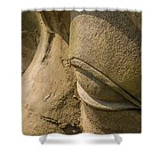 Stone Idol Shower Curtain