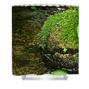 Stone Mouth Shower Curtain