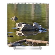 Stone Reflections Shower Curtain