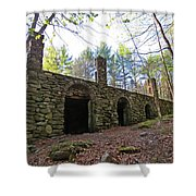 Stone Ruins Shower Curtain