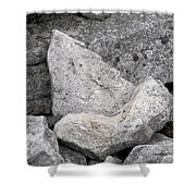 Stone Tooth Shower Curtain