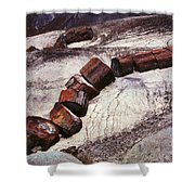 Stone Trees - 336 Shower Curtain