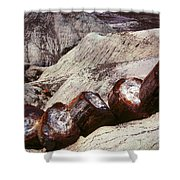 Stone Trees - 360 Shower Curtain