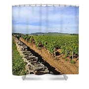 Stone Wall. Vineyard. Cote De Beaune. Burgundy. France. Europe Shower Curtain