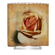 Stonewall Golden Rose Shower Curtain