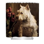 Stop And Smell The Flowers Shower Curtain by Edward Fielding