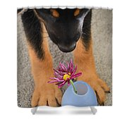 Stop And Smell The Flowers Shower Curtain