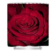 Stop To Smell The Roses Shower Curtain