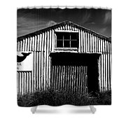 Stop Whaling Shower Curtain