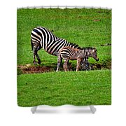 Stopping For A Drink Shower Curtain