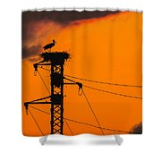 Stork At Sunset Shower Curtain