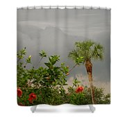 Storm Clouds And Flowers Shower Curtain