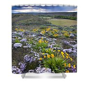 Storm Over Wildflowers Shower Curtain